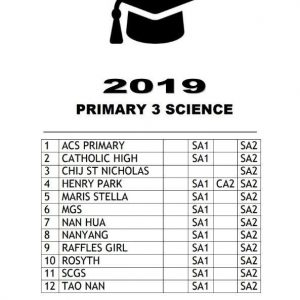 buy 2019 primary 3 exam papers test papers 04