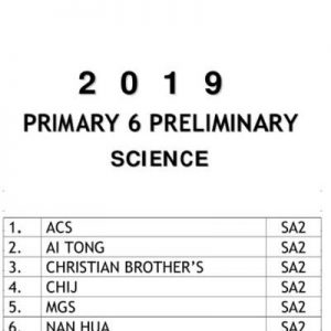 buy 2019 primary 6 exam papers test papers 18
